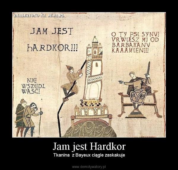 Jam jest Hardkor – Tkanina  z Bayeux ciągle zaskakuje