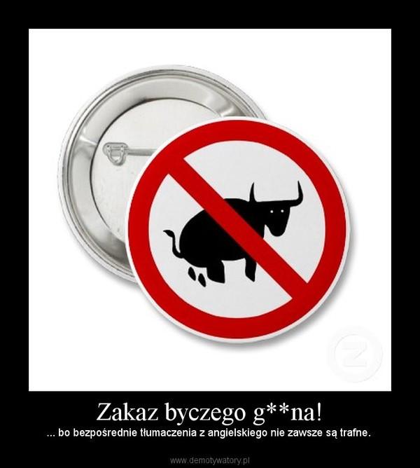 Zakaz byczego g**na! – ... bo bezpośrednie tłumaczenia z angielskiego nie zawsze są trafne.