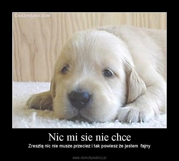 https://img3.demotywatoryfb.pl//uploads/201012/1293528146_by_zenek019_600.jpg
