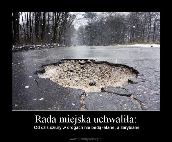 Rada miejska uchwaliła: – Od dziś dziury w drogach nie będą łatane, a zarybiane