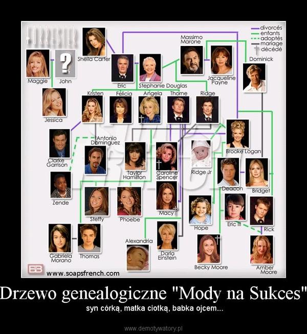"""Drzewo genealogiczne """"Mody na Sukces"""" – syn córką, matka ciotką, babka ojcem..."""
