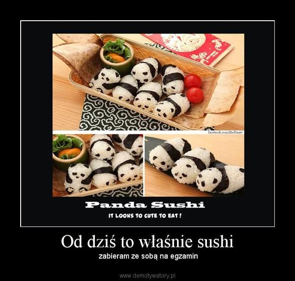 Od dziś to właśnie sushi – zabieram ze sobą na egzamin