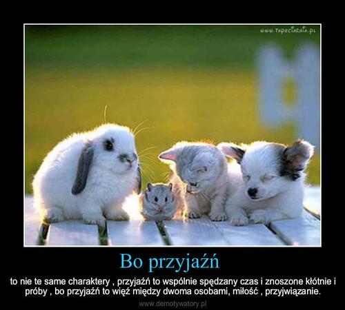 Bo przyjaźń