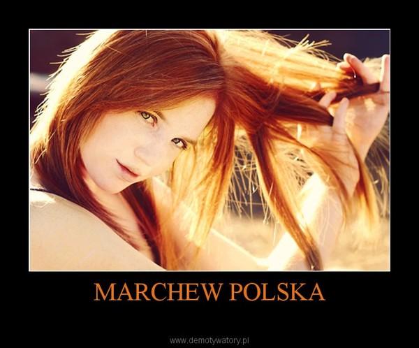 MARCHEW POLSKA –