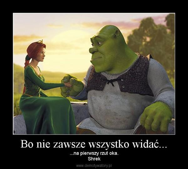 Bo nie zawsze wszystko widać... – ...na pierwszy rzut oka.Shrek