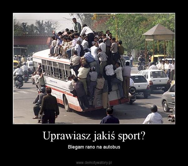Uprawiasz jakiś sport? – Biegam rano na autobus