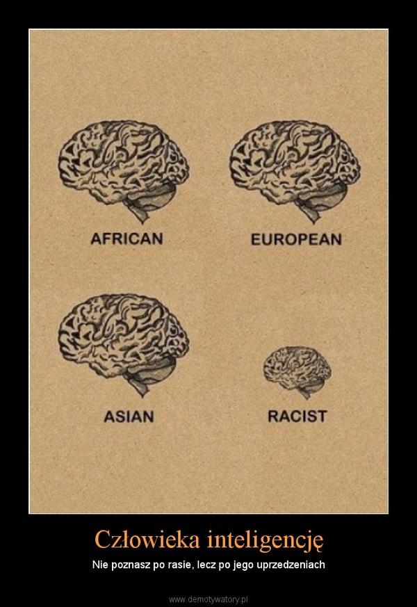 Człowieka inteligencję – Nie poznasz po rasie, lecz po jego uprzedzeniach