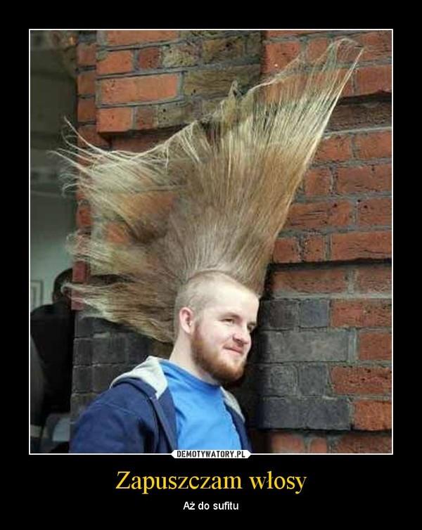 Zapuszczam włosy – Aż do sufitu
