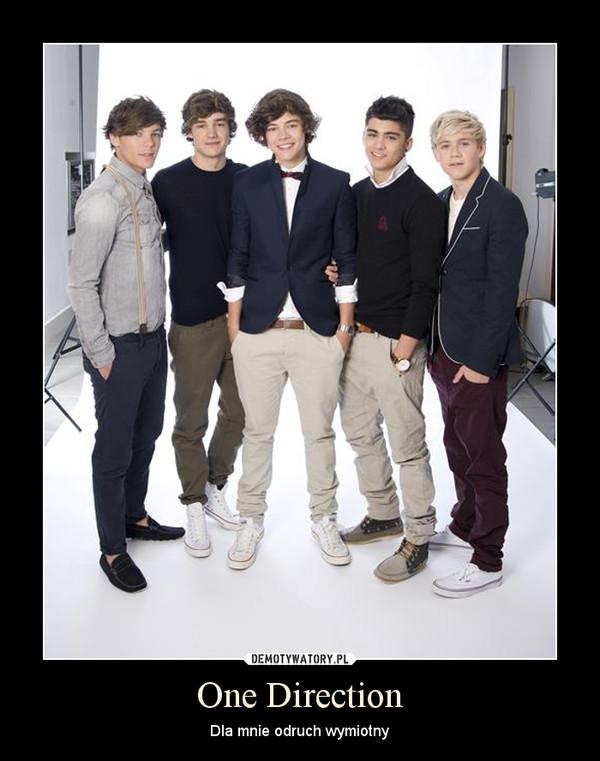 One Direction – Dla mnie odruch wymiotny