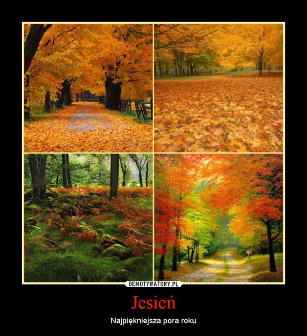 Jesień – Najpiękniejsza pora roku