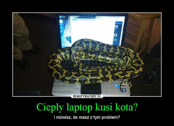 Ciepły laptop kusi kota? – I mówisz, że masz z tym problem?