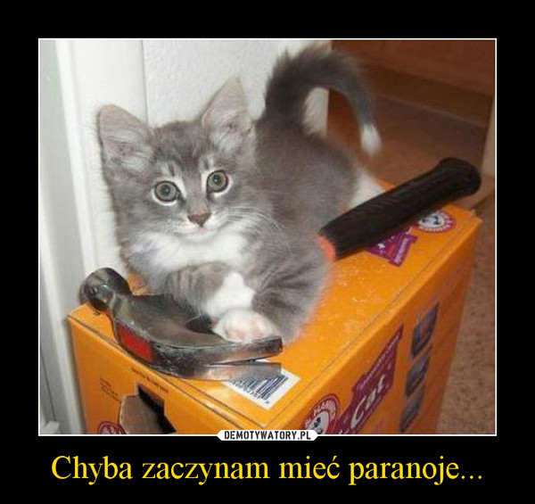 Chyba zaczynam mieć paranoje... –