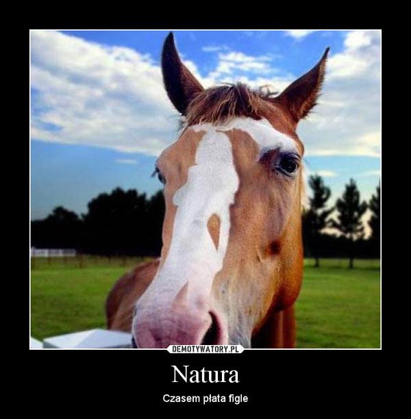 Natura – Czasem płata figle