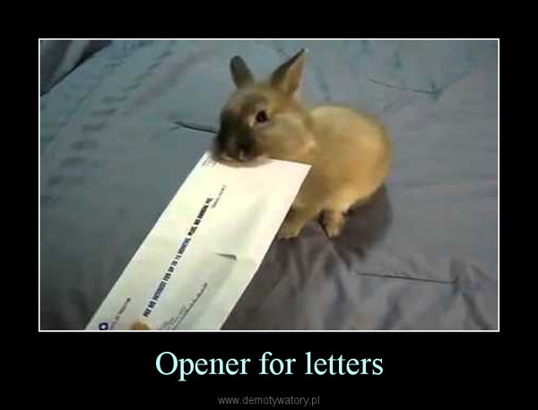 Opener for letters –