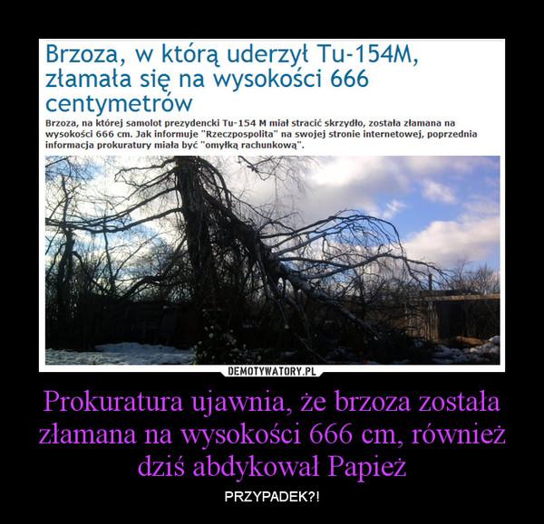 Prokuratura ujawnia, że brzoza została złamana na wysokości 666 cm, również dziś abdykował Papież – PRZYPADEK?!