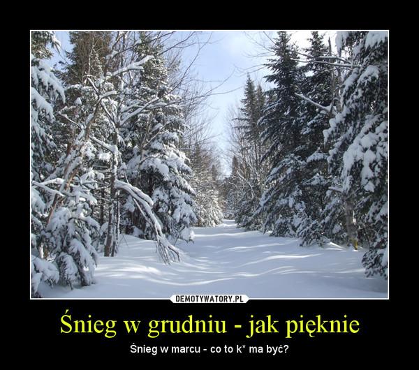 Śnieg w grudniu - jak pięknie – Śnieg w marcu - co to k* ma być?