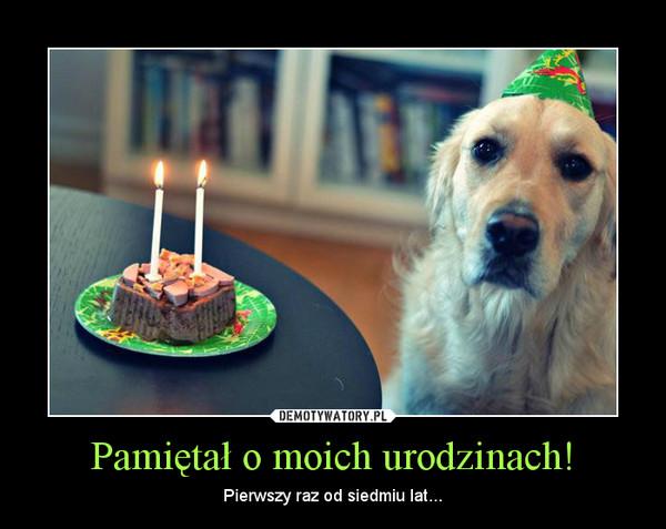 Pamiętał o moich urodzinach! – Pierwszy raz od siedmiu lat...