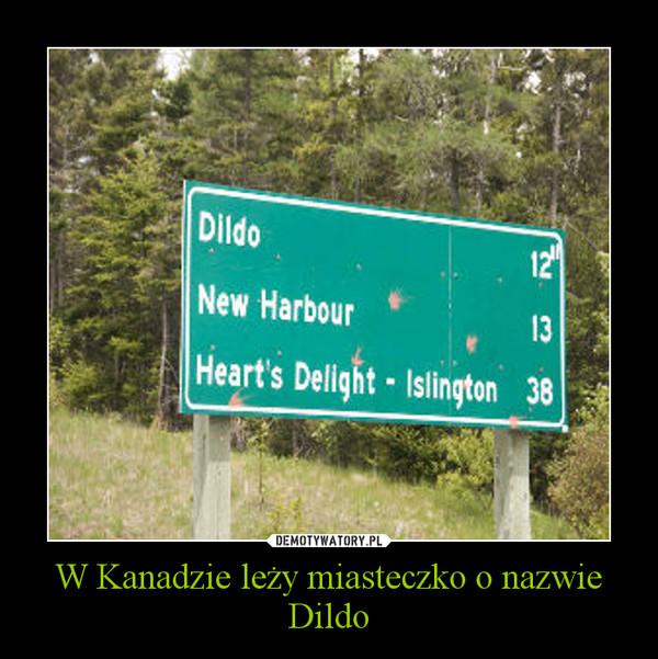 W Kanadzie leży miasteczko o nazwie Dildo –