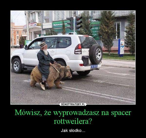 Mówisz, że wyprowadzasz na spacer rottweilera? – Jak słodko...