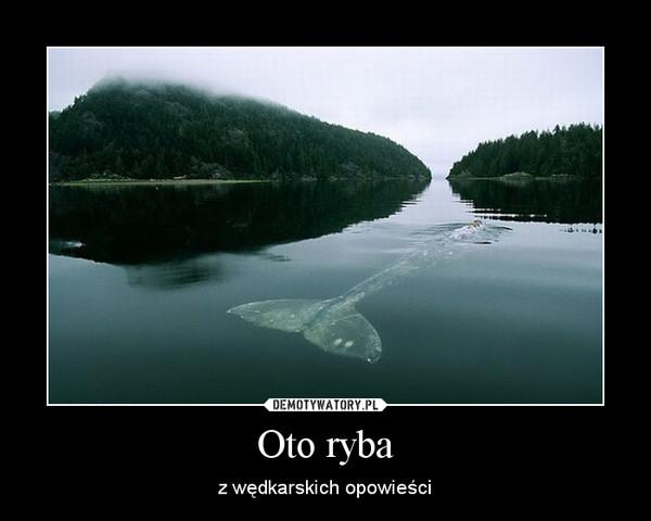 Oto ryba – z wędkarskich opowieści
