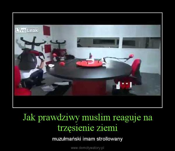 Jak prawdziwy muslim reaguje na trzęsienie ziemi – muzułmański imam strollowany