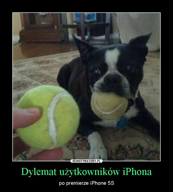 Dylemat użytkowników iPhona – po premierze iPhone 5S