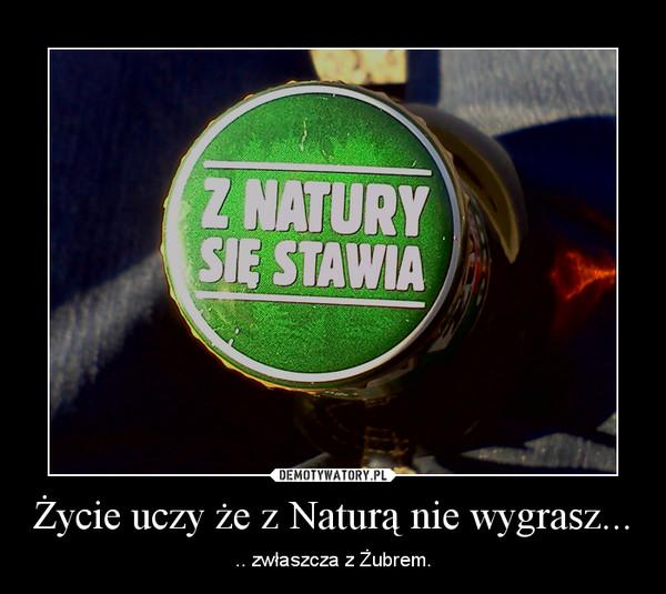 Życie uczy że z Naturą nie wygrasz... – .. zwłaszcza z Żubrem.