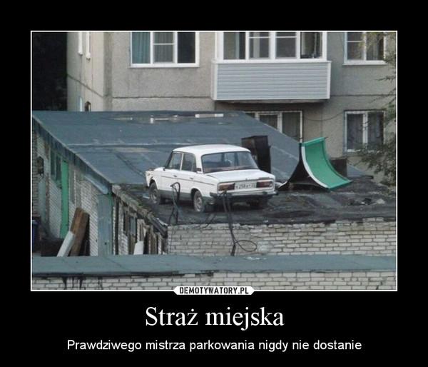 Straż miejska – Prawdziwego mistrza parkowania nigdy nie dostanie
