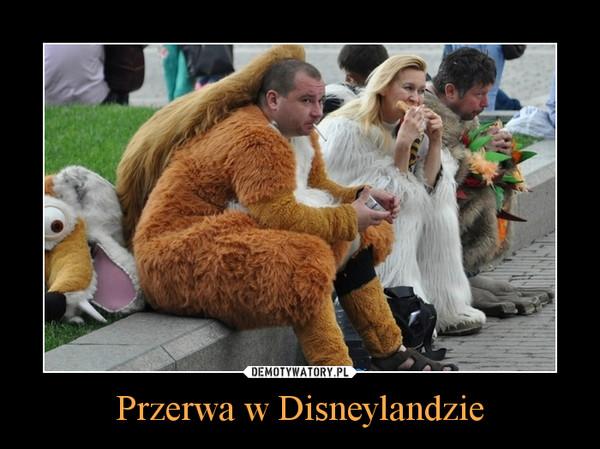 Przerwa w Disneylandzie –