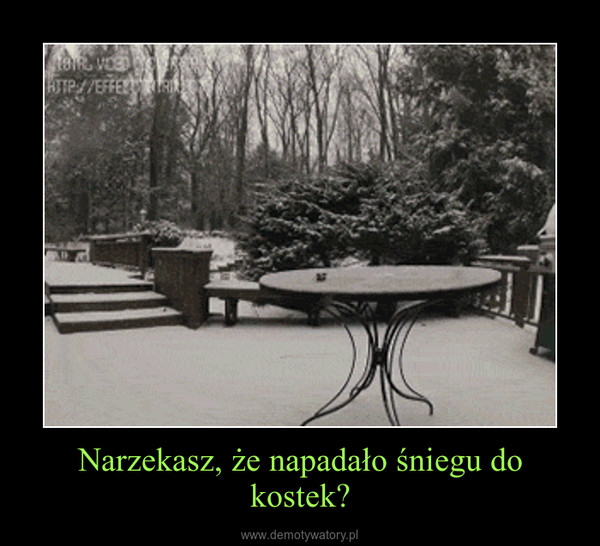 Narzekasz, że napadało śniegu do kostek? –