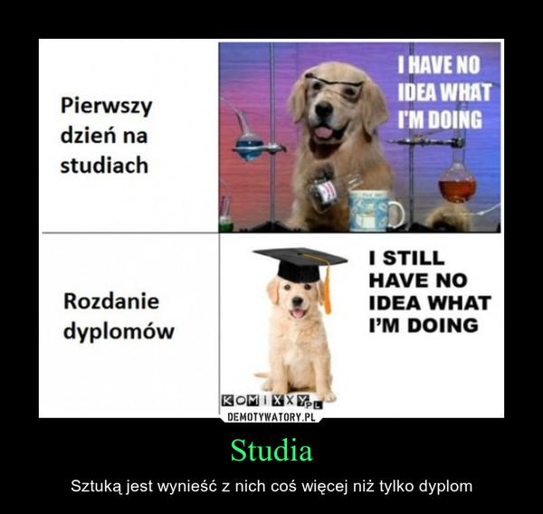 Studia – Sztuką jest wynieść z nich coś więcej niż tylko dyplom