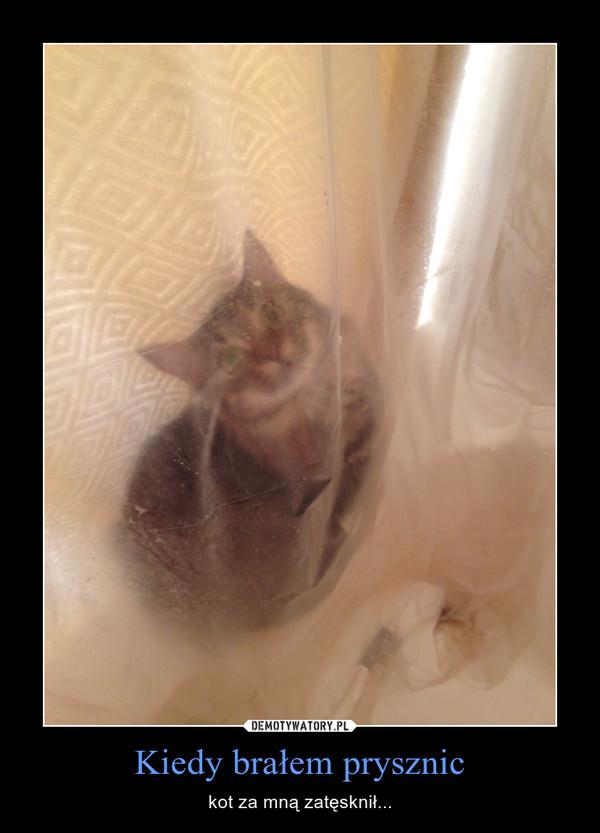 Kiedy brałem prysznic – kot za mną zatęsknił...