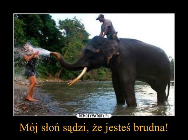 Mój słoń sądzi, że jesteś brudna! –