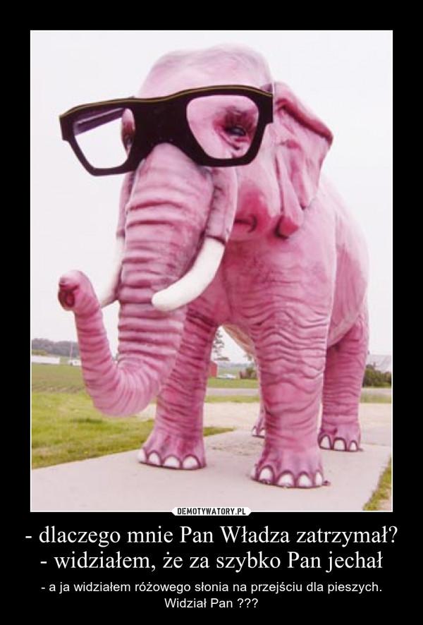 - dlaczego mnie Pan Władza zatrzymał?- widziałem, że za szybko Pan jechał – - a ja widziałem różowego słonia na przejściu dla pieszych. Widział Pan ???