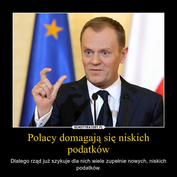 Polacy domagają się niskich podatków – Dlatego rząd już szykuje dla nich wiele zupełnie nowych, niskich podatków.