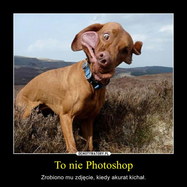 To nie Photoshop – Zrobiono mu zdjęcie, kiedy akurat kichał.