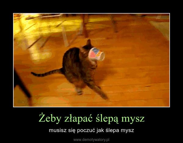 Żeby złapać ślepą mysz – musisz się poczuć jak ślepa mysz