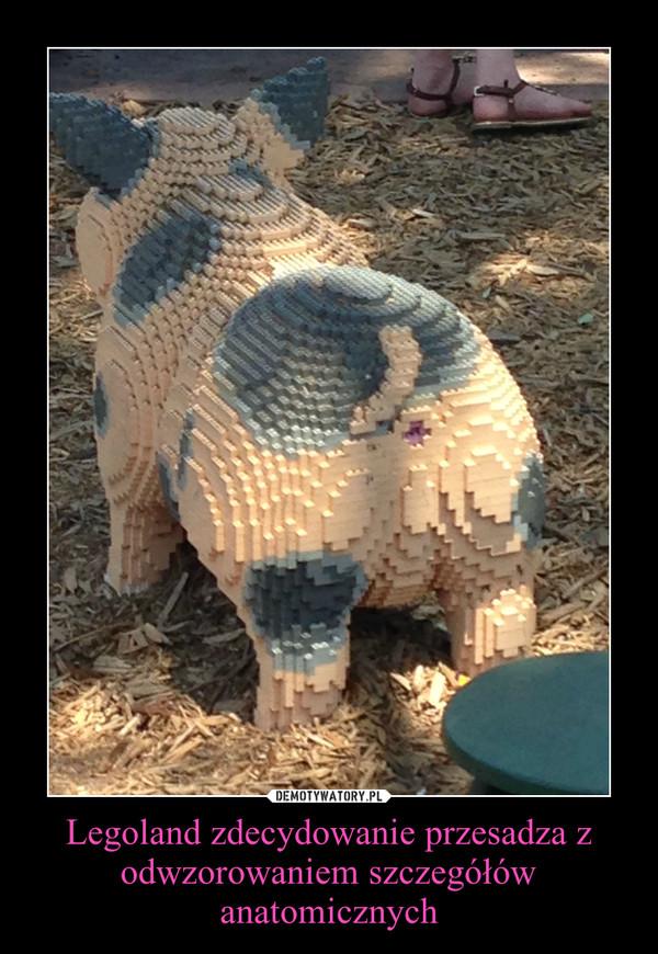 Legoland zdecydowanie przesadza z odwzorowaniem szczegółów anatomicznych –