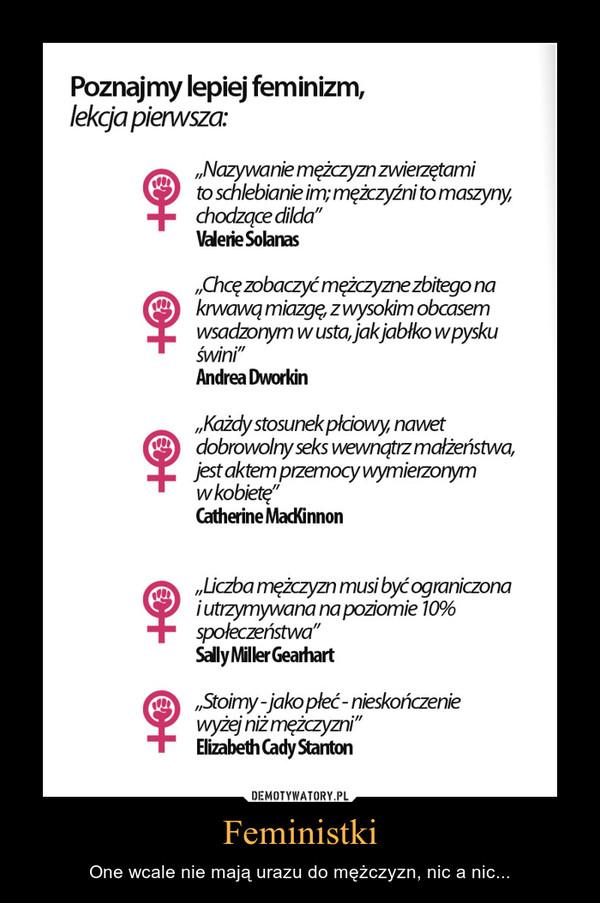 Feministki – One wcale nie mają urazu do mężczyzn, nic a nic...