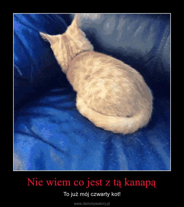 Nie wiem co jest z tą kanapą – To już mój czwarty kot!