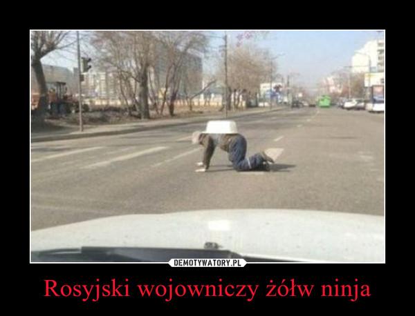 Rosyjski wojowniczy żółw ninja –