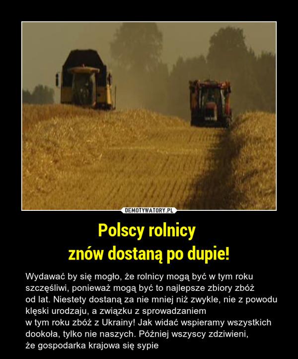 Polscy rolnicy znów dostaną po dupie! – Wydawać by się mogło, że rolnicy mogą być w tym roku szczęśliwi, ponieważ mogą być to najlepsze zbiory zbóż od lat. Niestety dostaną za nie mniej niż zwykle, nie z powodu klęski urodzaju, a związku z sprowadzaniem w tym roku zbóż z Ukrainy! Jak widać wspieramy wszystkich dookoła, tylko nie naszych. Później wszyscy zdziwieni, że gospodarka krajowa się sypie