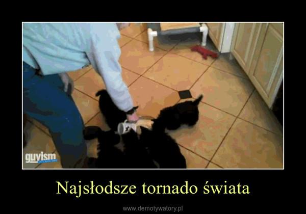 Najsłodsze tornado świata –