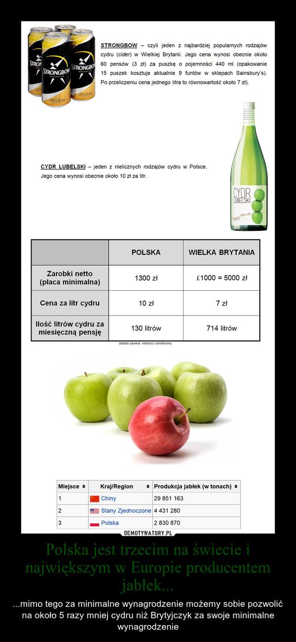 Polska jest trzecim na świecie i największym w Europie producentem jabłek...