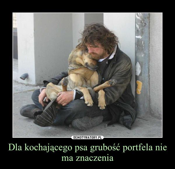Dla kochającego psa grubość portfela nie ma znaczenia –