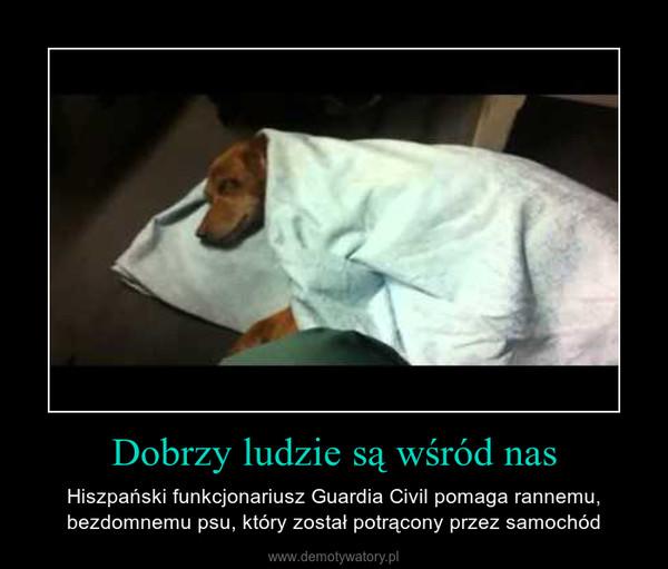Dobrzy ludzie są wśród nas – Hiszpański funkcjonariusz Guardia Civil pomaga rannemu, bezdomnemu psu, który został potrącony przez samochód