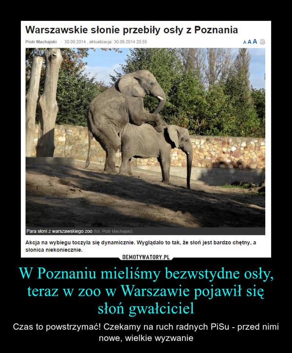 W Poznaniu mieliśmy bezwstydne osły, teraz w zoo w Warszawie pojawił się słoń gwałciciel – Czas to powstrzymać! Czekamy na ruch radnych PiSu - przed nimi nowe, wielkie wyzwanie