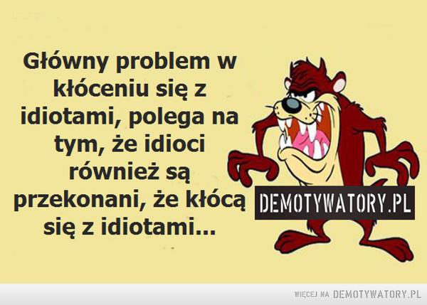 Głowny problem w kłóceniu się z idiotami... –