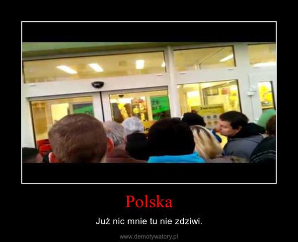 Polska – Już nic mnie tu nie zdziwi.