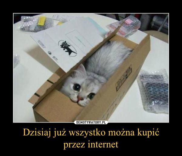 Dzisiaj już wszystko można kupićprzez internet –